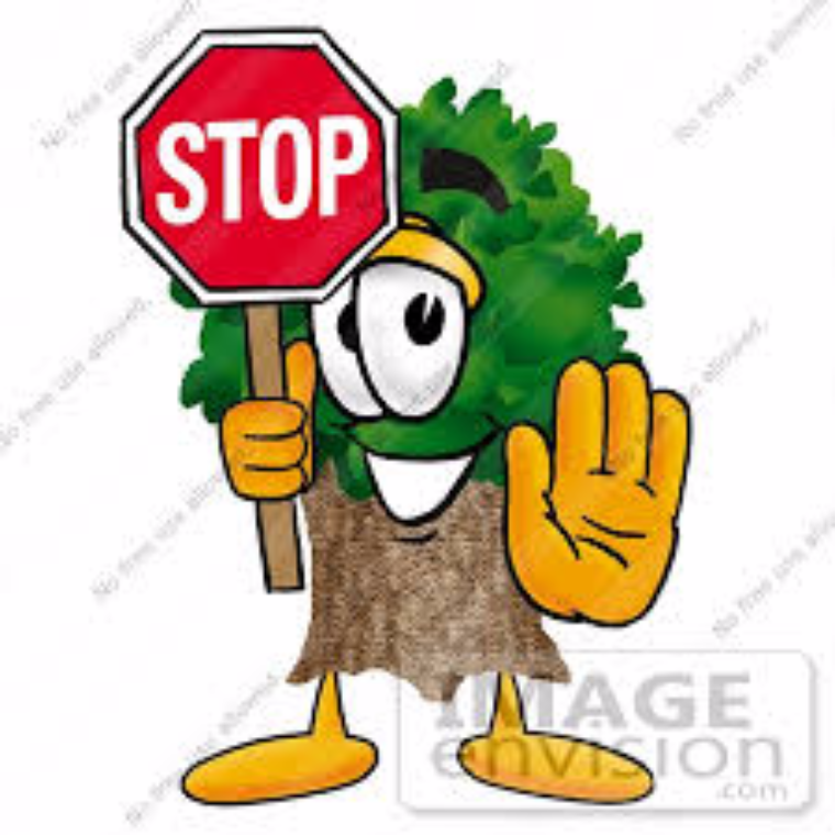 Stop Cutting Trees By Hushen H Letters To The Next