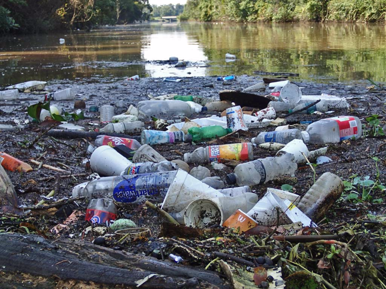 Litter Is Destroying Our World By Mara T Letters To The