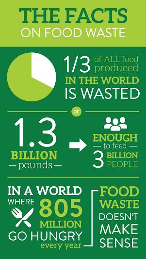 food waste 4 essay